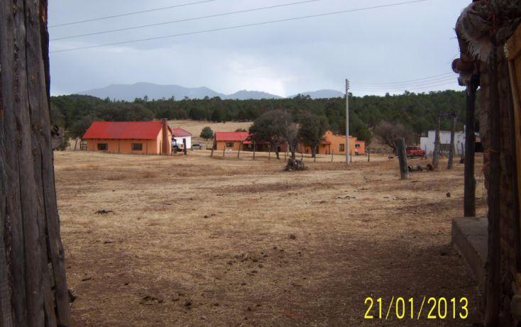 Foto de rancho en venta en, 10 de mayo, guerrero, chihuahua, 1214977 no 41