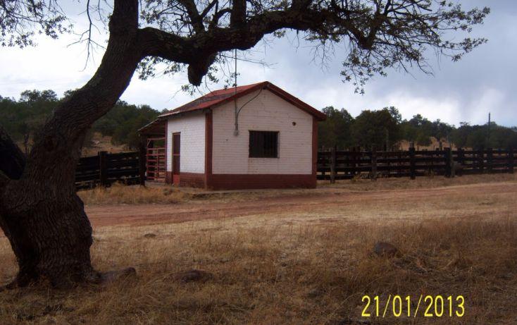 Foto de rancho en venta en, 10 de mayo, guerrero, chihuahua, 1214977 no 42
