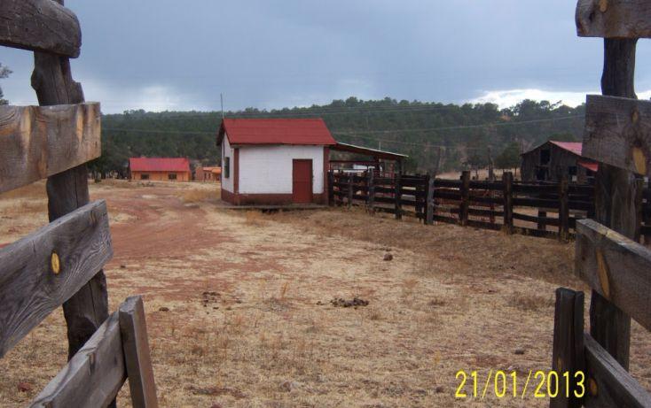 Foto de rancho en venta en, 10 de mayo, guerrero, chihuahua, 1214977 no 44