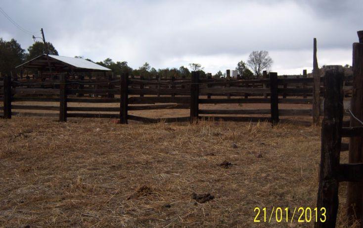 Foto de rancho en venta en, 10 de mayo, guerrero, chihuahua, 1214977 no 45