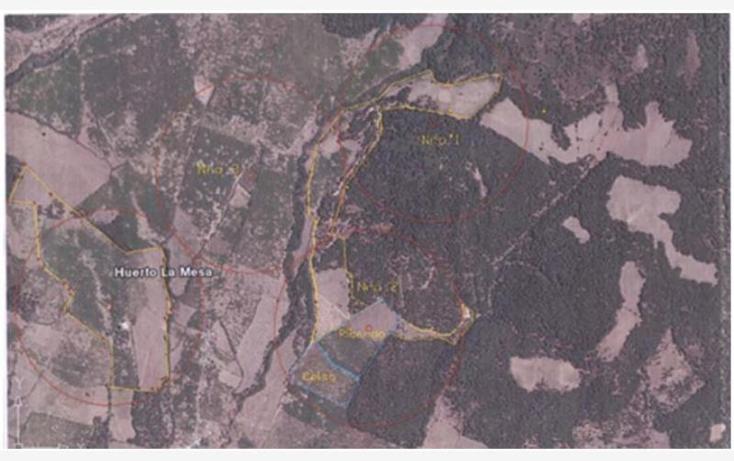 Foto de terreno comercial en venta en  10, zirimondiro, tanc?taro, michoac?n de ocampo, 1685242 No. 10