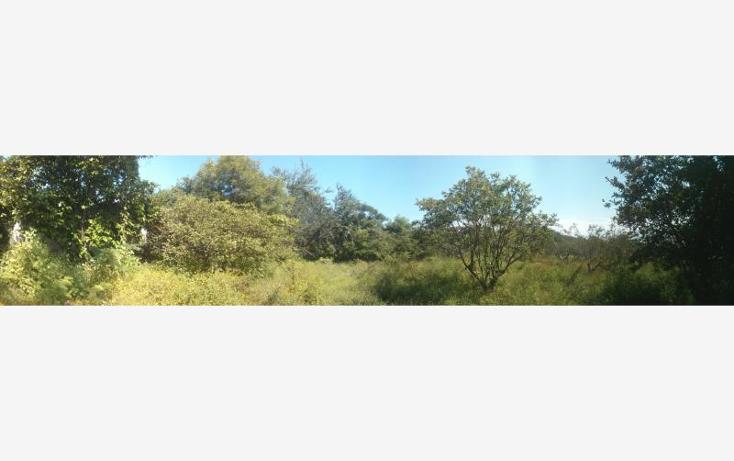 Foto de terreno habitacional en venta en  100, san nicolás de ibarra, chapala, jalisco, 1617162 No. 02
