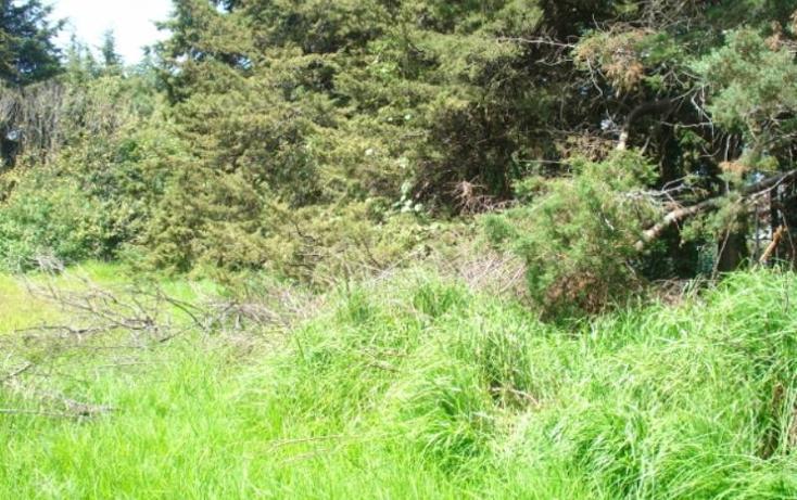 Foto de terreno habitacional en venta en  1000, almoloya de juárez centro, almoloya de juárez, méxico, 379864 No. 03