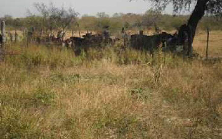 Foto de rancho en venta en 114, gral treviño, general treviño, nuevo león, 1789805 no 14