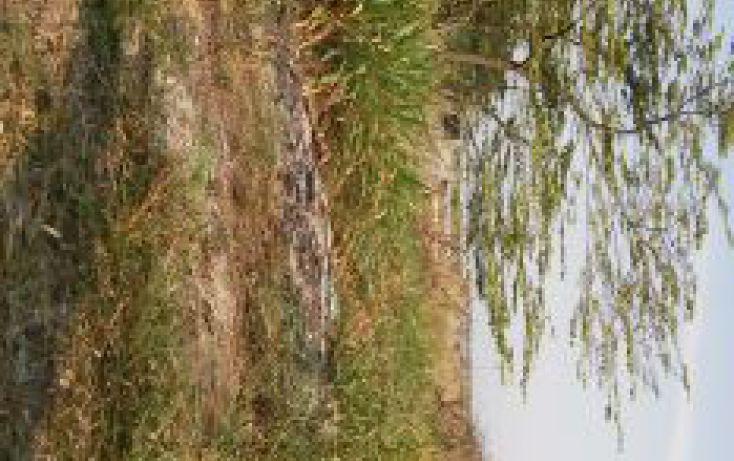 Foto de terreno habitacional en renta en 119, cárdenas centro, cárdenas, tabasco, 2012637 no 05