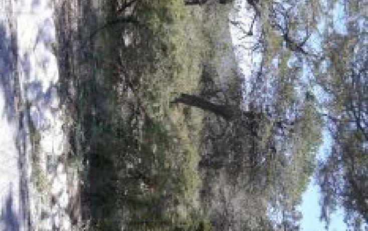 Foto de terreno habitacional en venta en 12, los lirios, arteaga, coahuila de zaragoza, 2012745 no 12