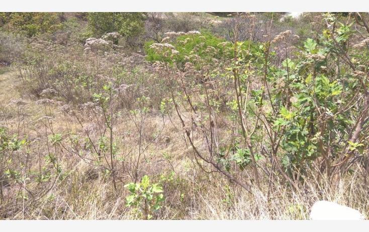 Foto de terreno habitacional en venta en  12, santa cruz del astillero, el arenal, jalisco, 2028236 No. 07