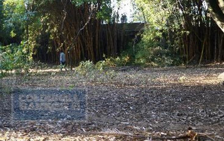 Foto de terreno habitacional en venta en  124, chamilpa, cuernavaca, morelos, 2035720 No. 02