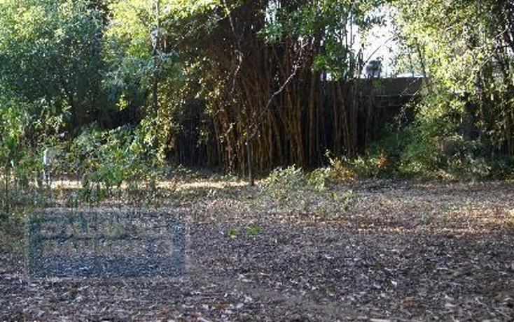 Foto de terreno habitacional en venta en  124, chamilpa, cuernavaca, morelos, 2035720 No. 03