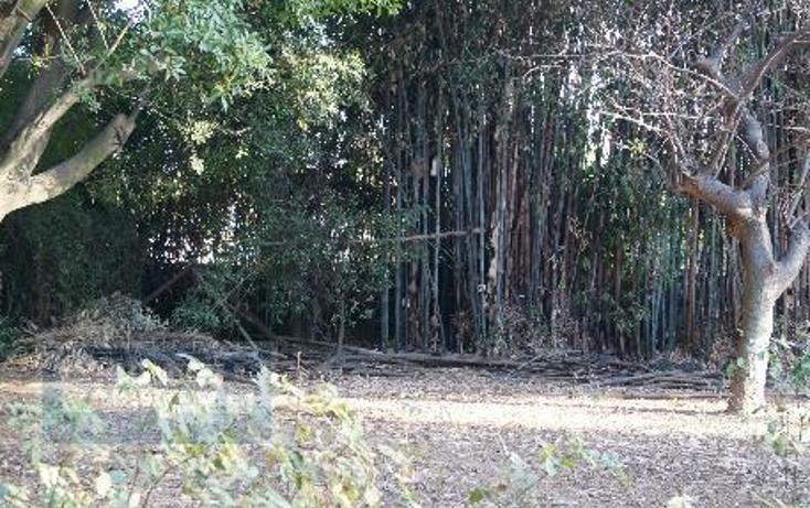 Foto de terreno habitacional en venta en  124, chamilpa, cuernavaca, morelos, 2035720 No. 07