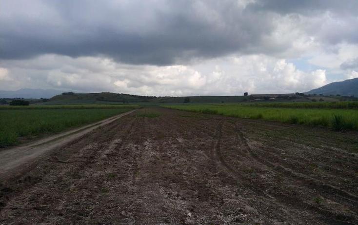 Foto de terreno industrial en venta en  15, el navarre?o ii, xalisco, nayarit, 1062583 No. 03