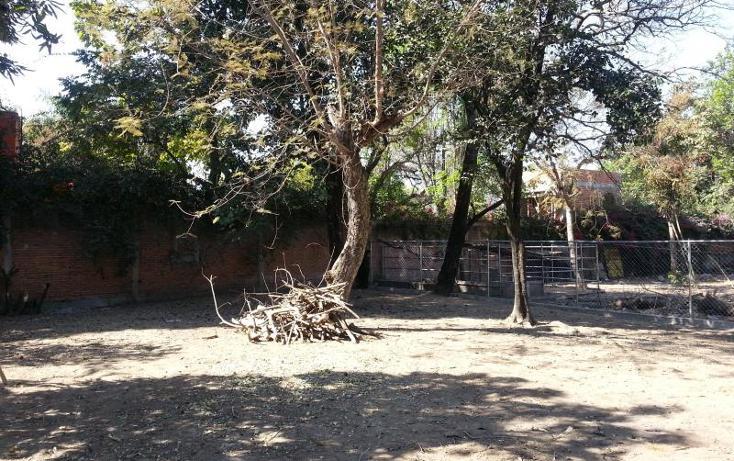 Foto de terreno habitacional en venta en  15, itzamatitlán, yautepec, morelos, 1559158 No. 05