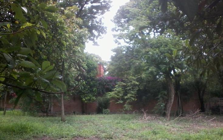 Foto de terreno habitacional en venta en  15, itzamatitlán, yautepec, morelos, 1559158 No. 06