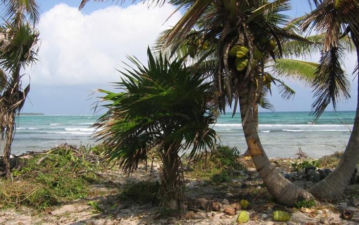Foto de terreno comercial en venta en costera norte 15, mahahual, othón p. blanco, quintana roo, 2668837 No. 05