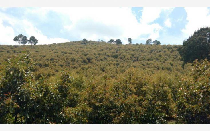 Foto de rancho en venta en 15km de la carretera, ario de rosales, ario, michoacán de ocampo, 1779118 no 02