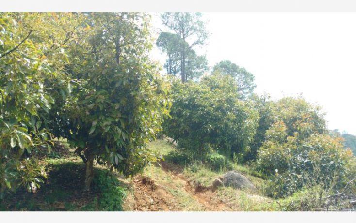 Foto de rancho en venta en 15km de la carretera, ario de rosales, ario, michoacán de ocampo, 1779118 no 05
