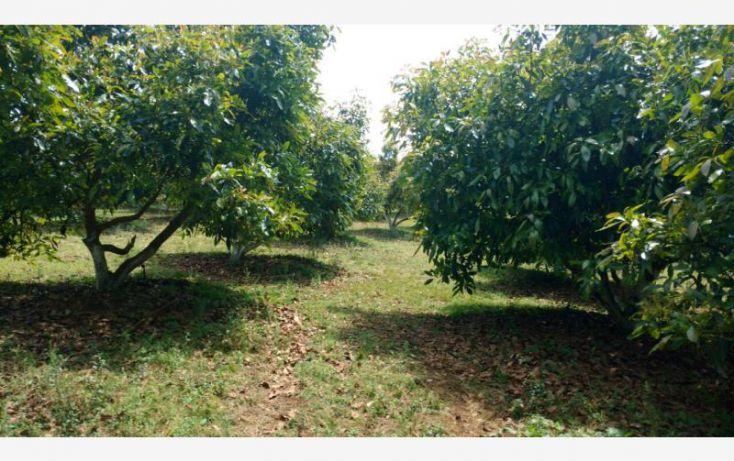 Foto de rancho en venta en 15km de la carretera, ario de rosales, ario, michoacán de ocampo, 1779118 no 06