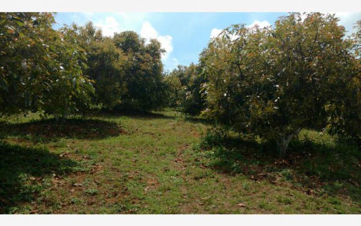 Foto de rancho en venta en 15km de la carretera, ario de rosales, ario, michoacán de ocampo, 1779118 no 07