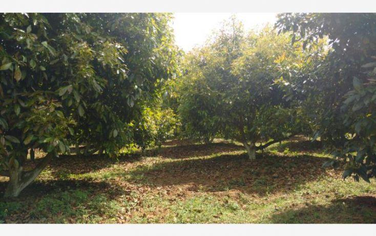 Foto de rancho en venta en 15km de la carretera, ario de rosales, ario, michoacán de ocampo, 1779118 no 09