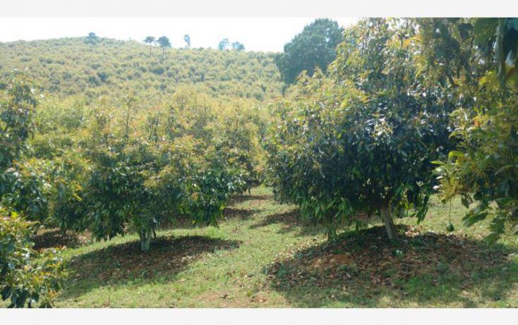 Foto de rancho en venta en 15km de la carretera, ario de rosales, ario, michoacán de ocampo, 1779118 no 10