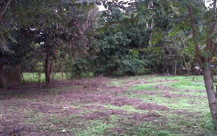 Foto de terreno comercial en venta en, 17 de julio, nacajuca, tabasco, 1252661 no 02