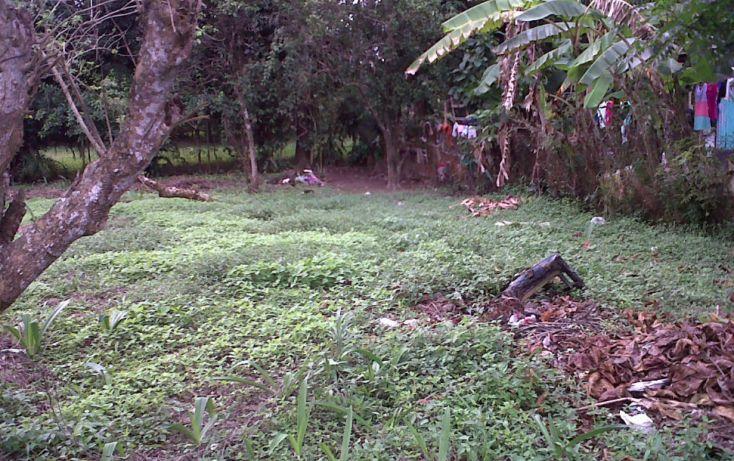 Foto de terreno comercial en venta en, 17 de julio, nacajuca, tabasco, 1252661 no 03