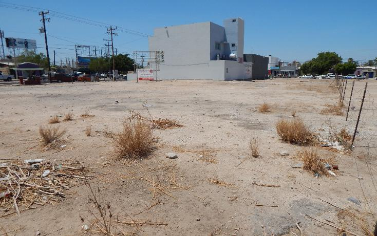 Foto de terreno comercial en venta en  , 17 de octubre, la paz, baja california sur, 2014616 No. 07