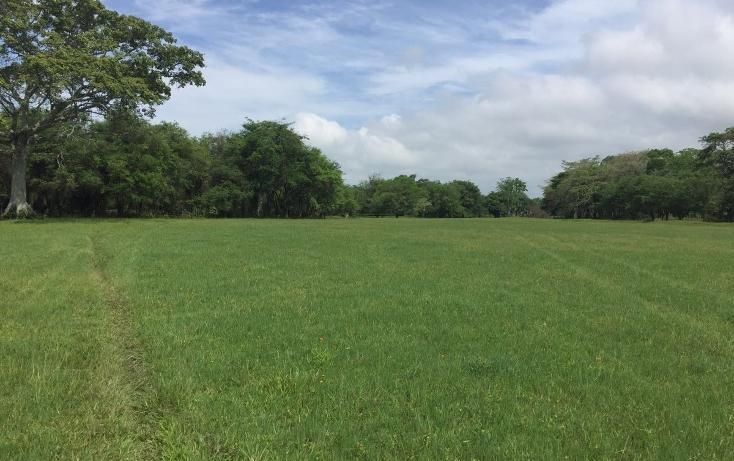 Foto de terreno habitacional en venta en  , 18 de marzo, macuspana, tabasco, 2042841 No. 02