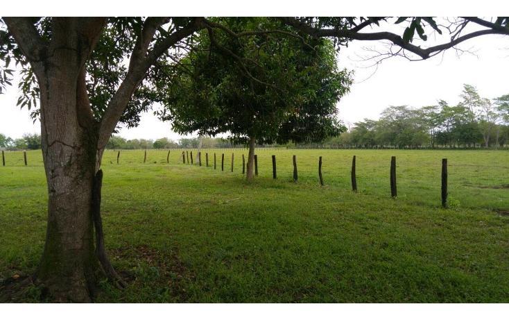 Foto de terreno habitacional en venta en  , 18 de marzo, macuspana, tabasco, 2042841 No. 05