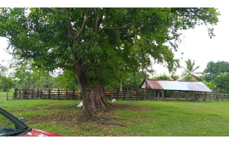 Foto de terreno habitacional en venta en  , 18 de marzo, macuspana, tabasco, 2042841 No. 07