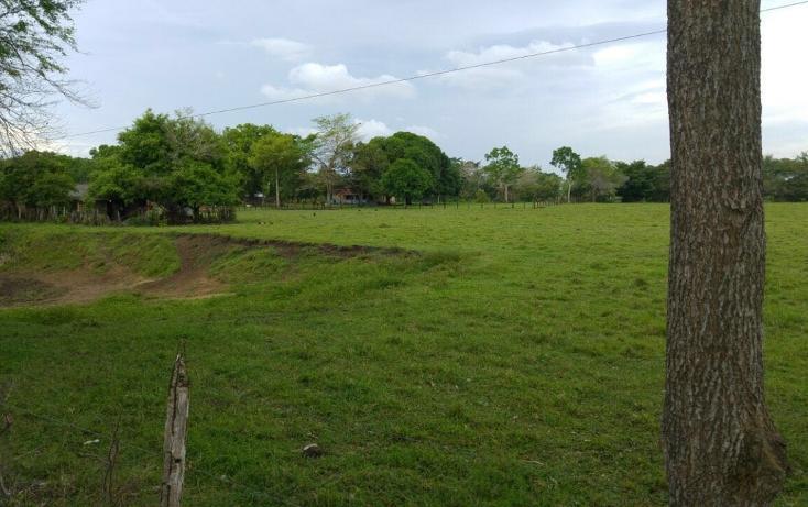Foto de terreno habitacional en renta en, 18 de marzo, macuspana, tabasco, 2042845 no 01