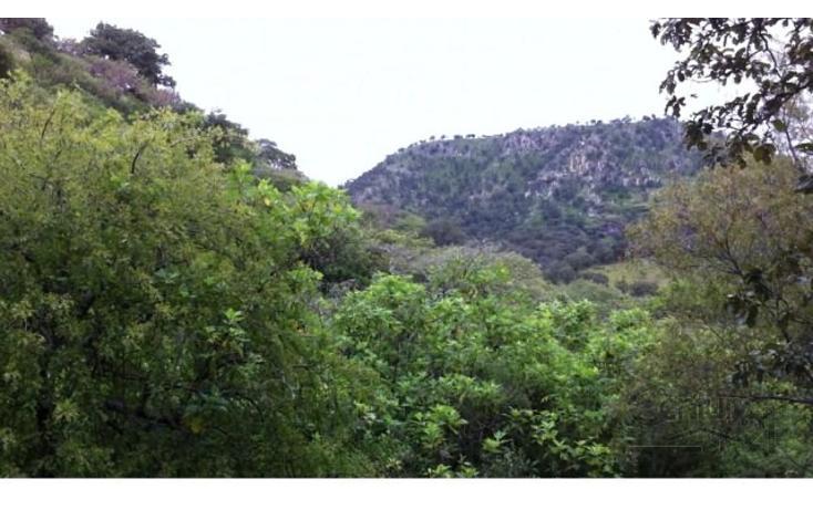 Foto de terreno habitacional en venta en 18 kilometro al norte de san marcos 18 kilometro al norte de san marcos , etzatlan centro, etzatlán, jalisco, 1715686 No. 07