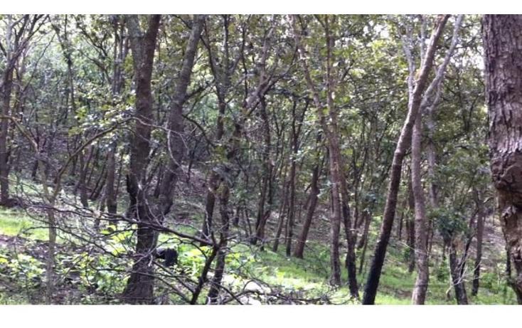 Foto de terreno habitacional en venta en 18 kilometro al norte de san marcos 18 kilometro al norte de san marcos , etzatlan centro, etzatlán, jalisco, 1715686 No. 08