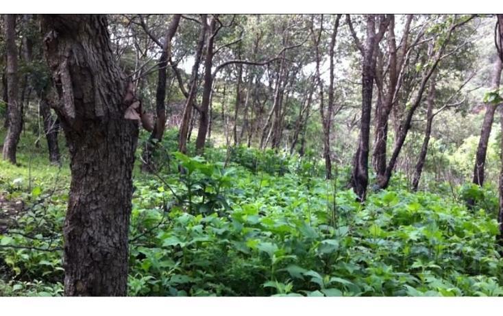 Foto de terreno habitacional en venta en 18 kilometro al norte de san marcos 18 kilometro al norte de san marcos , etzatlan centro, etzatlán, jalisco, 1715686 No. 09