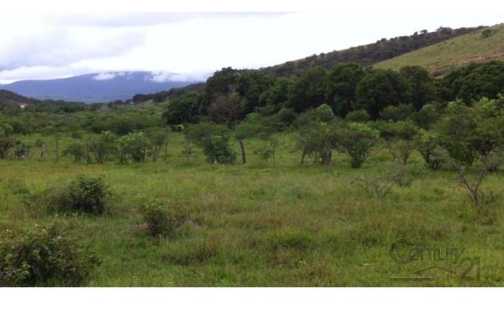 Foto de terreno habitacional en venta en 18 kilometro al norte de san marcos 18 kilometro al norte de san marcos , etzatlan centro, etzatlán, jalisco, 1715686 No. 18