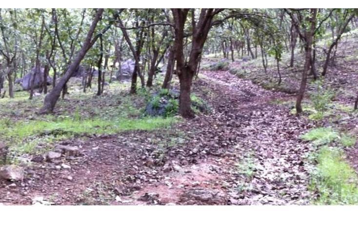 Foto de terreno habitacional en venta en 18 kilometro al norte de san marcos 18 kilometro al norte de san marcos , etzatlan centro, etzatlán, jalisco, 1715686 No. 25