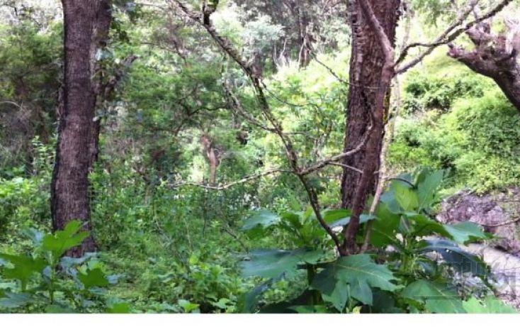 Foto de terreno habitacional en venta en 18 km al norte de san marcos 18 km al norte de san marcos, etzatlan centro, etzatlán, jalisco, 1715686 no 10