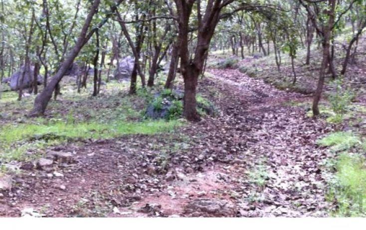 Foto de terreno habitacional en venta en 18 km al norte de san marcos 18 km al norte de san marcos, etzatlan centro, etzatlán, jalisco, 1715686 no 25