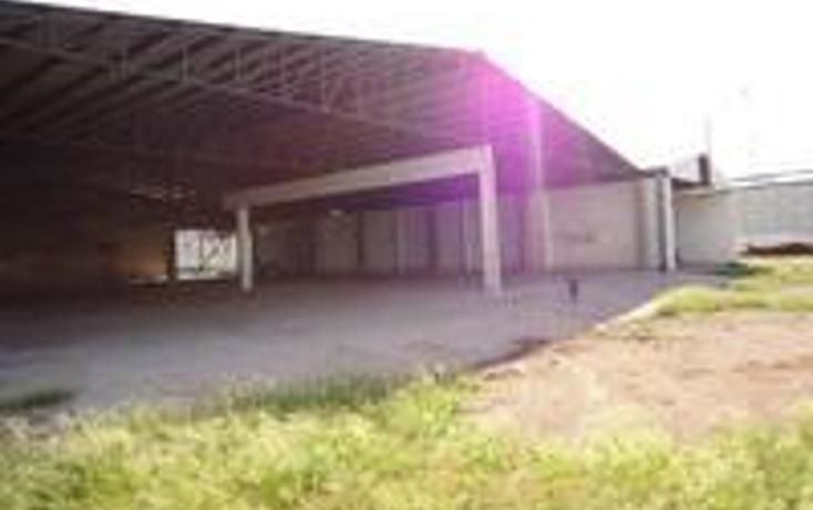 Foto de nave industrial en venta en  , 1ro de mayo, chihuahua, chihuahua, 1393723 No. 05