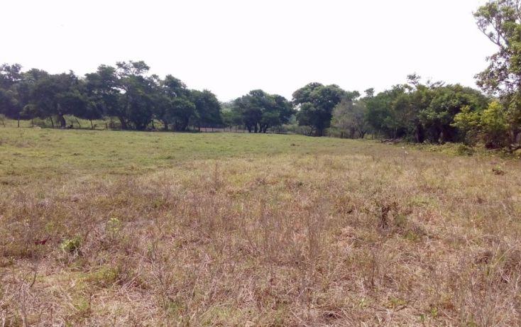 Foto de terreno habitacional en venta en, 2 bocas, medellín, veracruz, 1951606 no 06