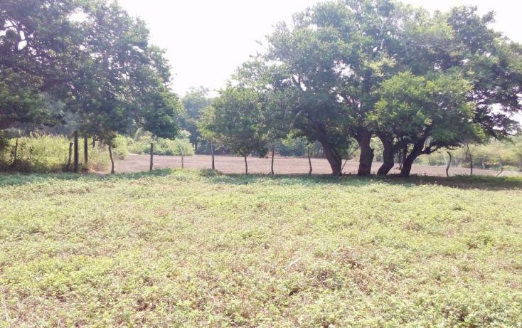 Foto de terreno habitacional en venta en, 2 bocas, medellín, veracruz, 1951606 no 08