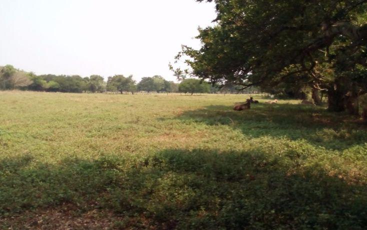 Foto de terreno habitacional en venta en, 2 bocas, medellín, veracruz, 1951606 no 10