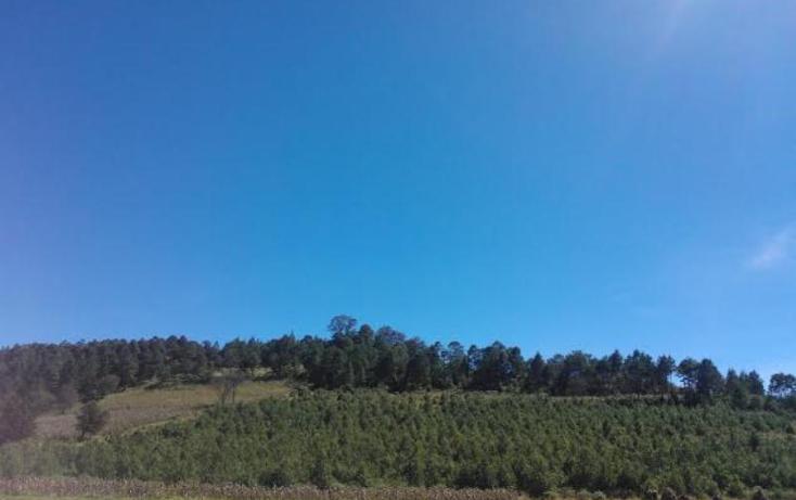 Foto de rancho en venta en  2, chichicaxtla, aquixtla, puebla, 503485 No. 03