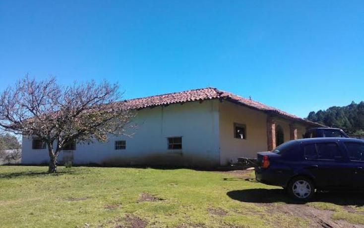 Foto de rancho en venta en chichicaxtla 2, chichicaxtla, aquixtla, puebla, 503485 No. 04