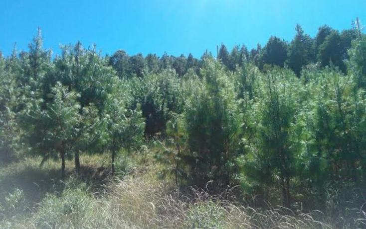 Foto de rancho en venta en  2, chichicaxtla, aquixtla, puebla, 503485 No. 06