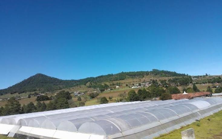 Foto de rancho en venta en  2, chichicaxtla, aquixtla, puebla, 503485 No. 09