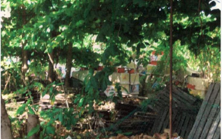 Foto de terreno comercial en venta en 2 nte entre 45ave y 59ave, 10 de abril, cozumel, quintana roo, 1461535 no 03