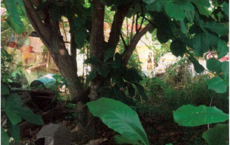 Foto de terreno comercial en venta en 2 nte entre 45ave y 59ave, 10 de abril, cozumel, quintana roo, 1461535 no 04