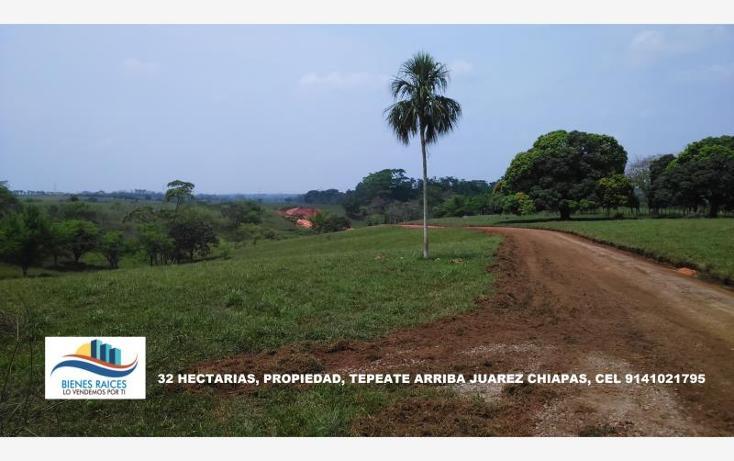 Foto de terreno habitacional en venta en  2, tecpate arriba, juárez, chiapas, 1943894 No. 01