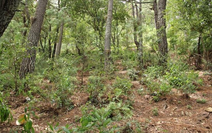 Foto de terreno comercial en venta en buenavista 20, articulo 115, san cristóbal de las casas, chiapas, 881001 No. 08